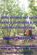 Copertina_Valerio_Cristofori