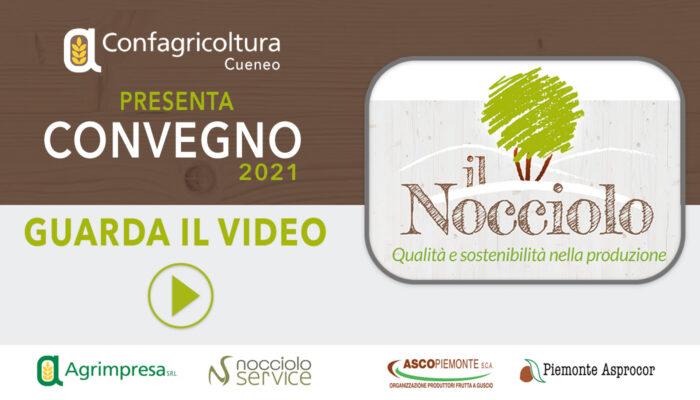 Immagine_Home_Video_Convegno